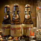 Brouwerij Lefebvre Hopus bier