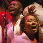 Evenement, event, LOndon Community Gospel Choir, wereldmuziek, folk, Capitole Gent, Gent, Uit in Gent, Wat te doen in Gent