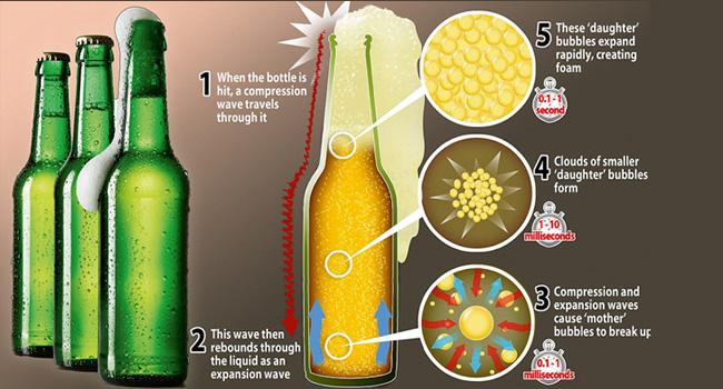 bier, schuimen, flesjes, café, schol, santé, gezondheid