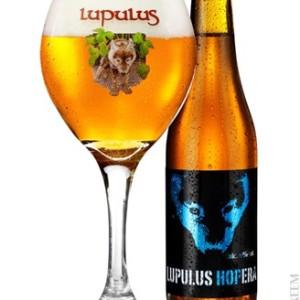 Lupulus Hopera